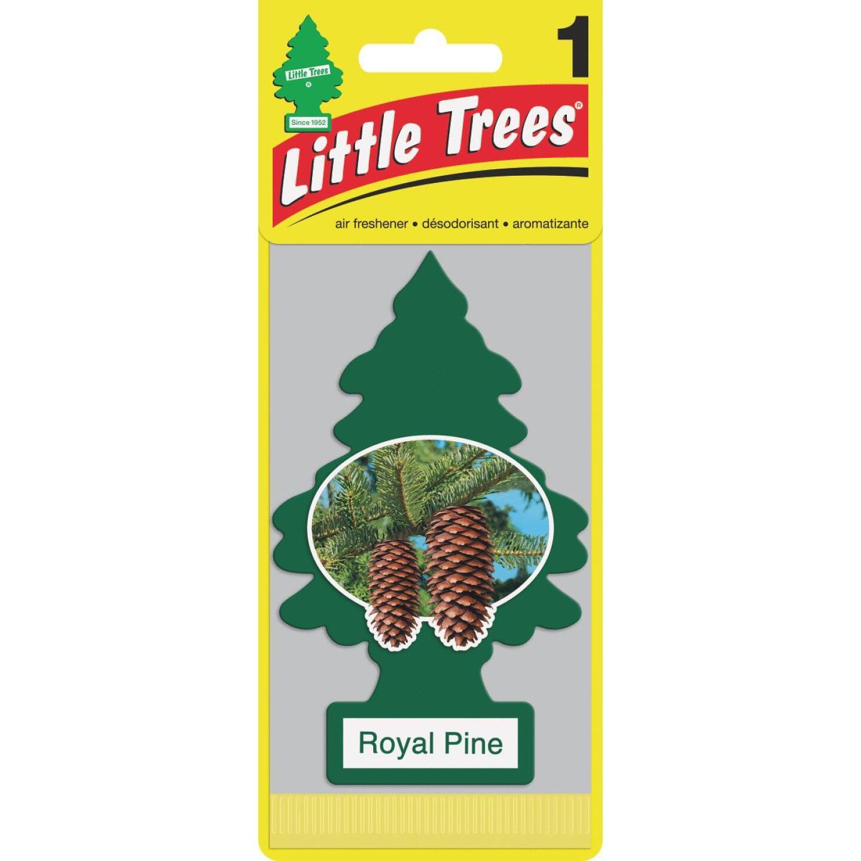 Little Trees Car Air Freshener, Royal Pine Image 1