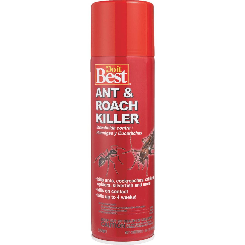 Do it Best 16 Oz. Aerosol Spray Ant & Roach Killer Image 2
